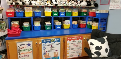 Classroom library in Renee's 2nd grade classroom.
